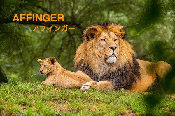 アフィンガー